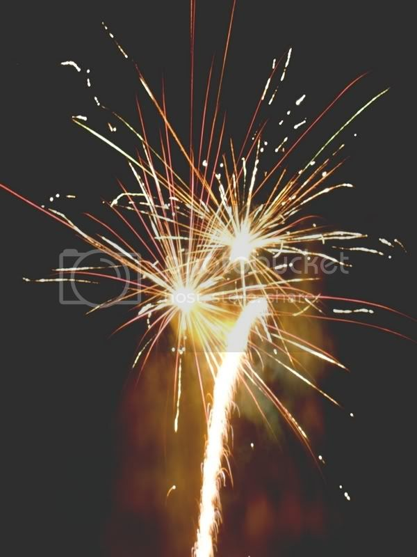 Firework Pictures, Images and Photos